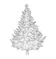 hand drawn sketch pine tree vector image vector image