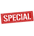 special sign or stamp vector image vector image