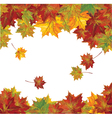 autumn colorful leaves vector image vector image