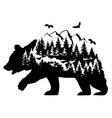 brown bear fantasy vector image vector image
