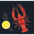 Crayfish with lemon and dill vector image vector image