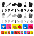 different kinds of vegetables flat icons in set vector image vector image