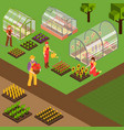 farm isometric background vector image vector image
