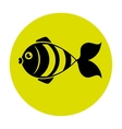Fish icon graphic design vector image