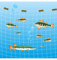 fishing network and fish river vector image vector image