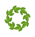 green leaves isolated vector image