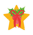 merry christmas star bow and mistletoe decoration vector image vector image