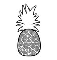 pineapple tropical fruits on white background vector image