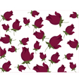 Roses pattern background vector image vector image