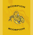 scorpion yellow vector image vector image
