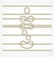 knots and loops on ropes vector image
