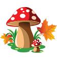 Cartoon mushroom vector image vector image