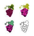 foru grape icons vector image