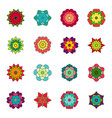 set bright flowers vector image vector image