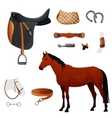 Set of equestrian equipment for horse vector image vector image