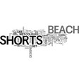 beach shorts explained text word cloud concept vector image vector image