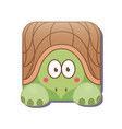 cute square turtle isolated on white background vector image vector image
