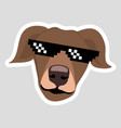 dog wearing pixel glasses brown dog with ears down vector image vector image
