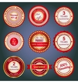 set sale badges labels and stickers in red vector image