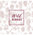wild berries emblem over seamless pattern with vector image vector image
