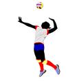 al 0403 volleyball 01 vector image vector image