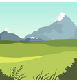 beautiful valley and mountains green summer vector image