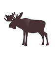 moose or elk with big horns isolated on white vector image vector image