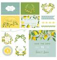 Scrapbook Design Elements Wedding Summer Flower vector image vector image