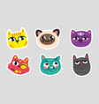 set of cat emoji dotted lines on gray background vector image vector image
