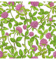 clover branch pattern vector image