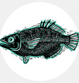 drawn freshwater fish silhouette natural graphic vector image vector image