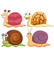 Four snails with different shells vector image vector image
