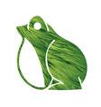 frog cartoon graphic vector image