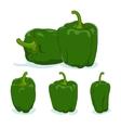 Green bell peppersweet pepper or capsicum vector image