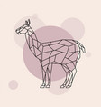 lama side view geometric style wild animal vector image vector image