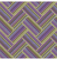 Multicolored Seamless Spring Knitted Pattern vector image vector image