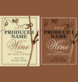set of two wine labels with grapevine vector image