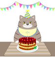 a gray fat cat in an apron and a cap sits at the vector image vector image