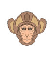 image of the head is monkey graphics hand vector image