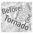 tips for tornado emergency preparation Word Cloud vector image vector image