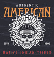 american native indian chief skull vector image