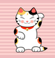 maneki neko cat wishes good luck vector image