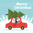 merry christmas card with penguin in car vector image vector image