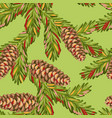 seamless pattern with spruce branches fir cones vector image