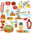 tomato ingredient in different dishes home vector image vector image