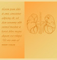 two section poster about human kidneys vector image vector image