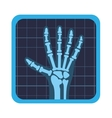 x rays test icon vector image vector image