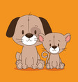 cute and little dog and cat characters vector image
