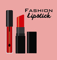 fashion make up vector image vector image