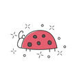 hand drawn of ladybug isolated vector image vector image